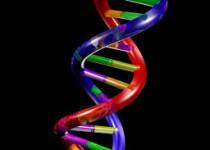 genetic matchmaking